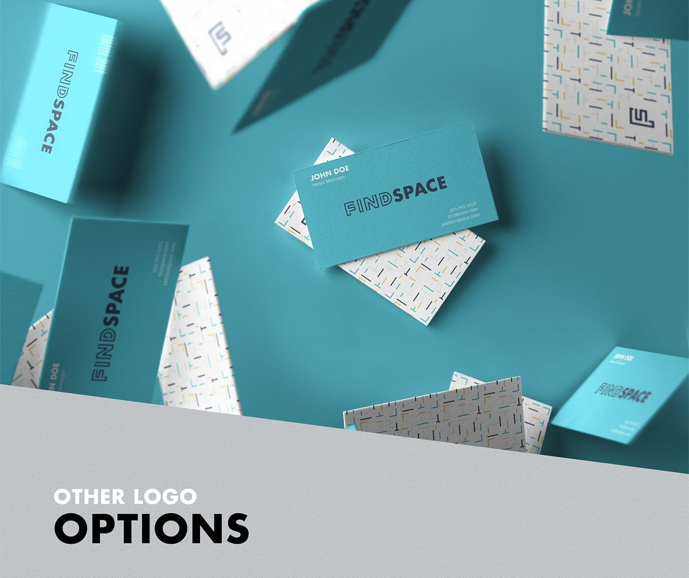 findspace_other-logo-options